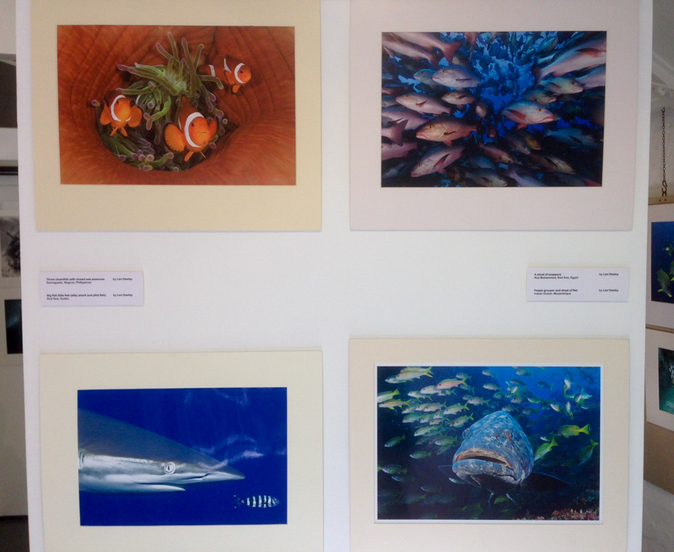 A selection of Len's image on display at the 25th Anniversary Exhibition